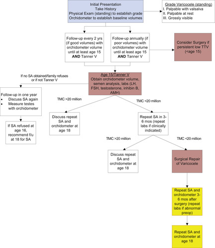 Evaluation and Management of the Adolescent Varicocele | Journal of